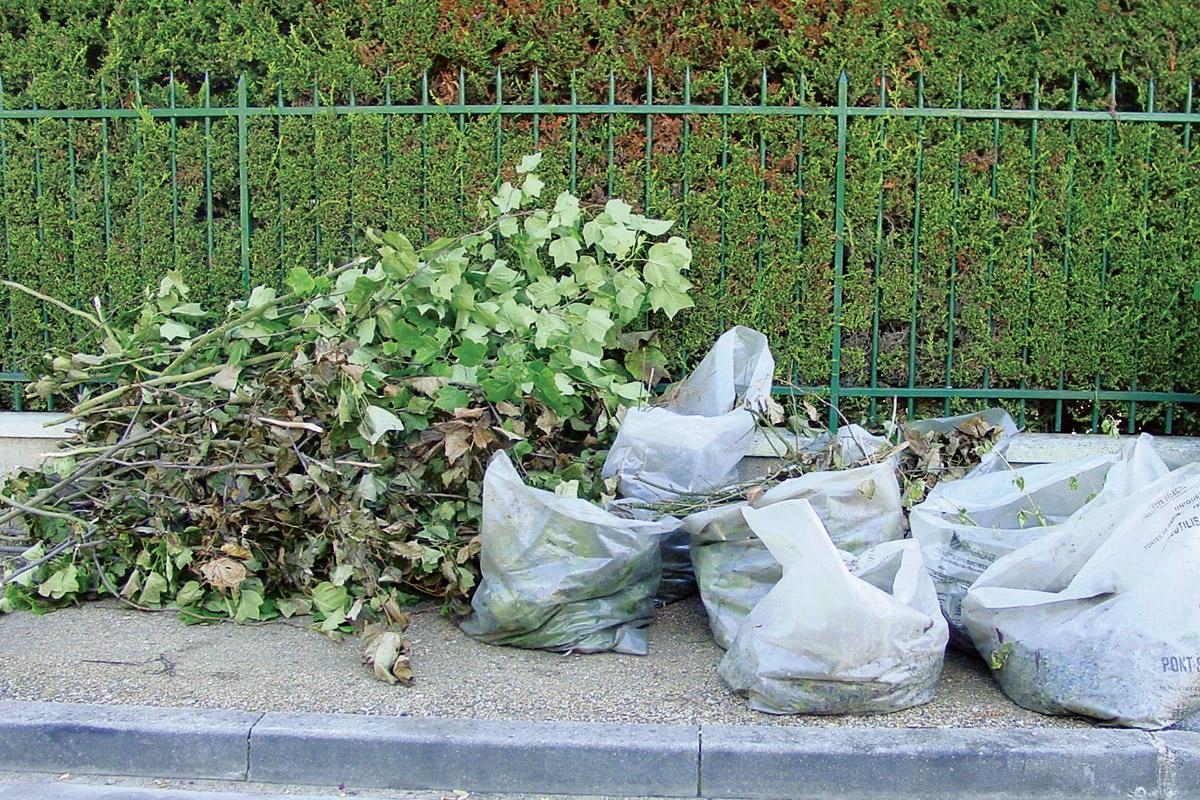 Reprise de la collecte des déchets verts !